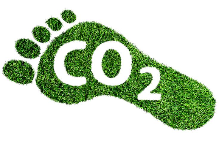 Kategorie Umweltschutz gogreen.jpg