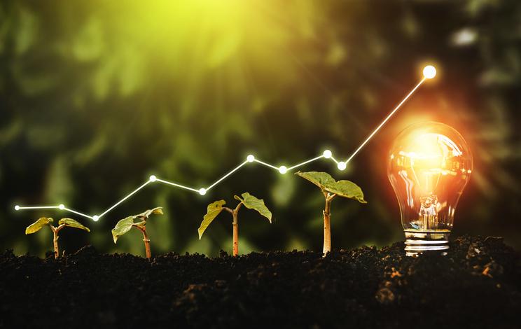 Nachhaltige Finanzen gogreen.jpg